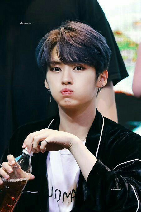 Is It Me Or Does Lee Know Of Stray Kids Looks Like Jungkook Of Bts Quora Lee know, real name lee minho, is the dancing gem of stray kids. stray kids looks like jungkook