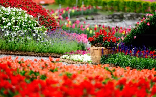 What is the difference between a garden and a park? - Quora