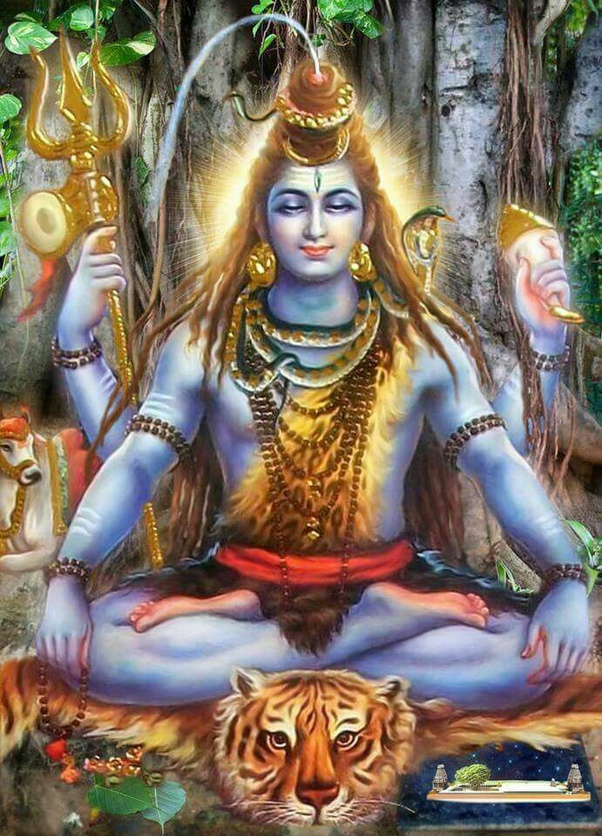 According to Hinduism, why is Lord Shiva always found to be meditating or  dreaming sitting on a tiger's skin? What does Lord Shiva meditate & what  does this signify? - Quora
