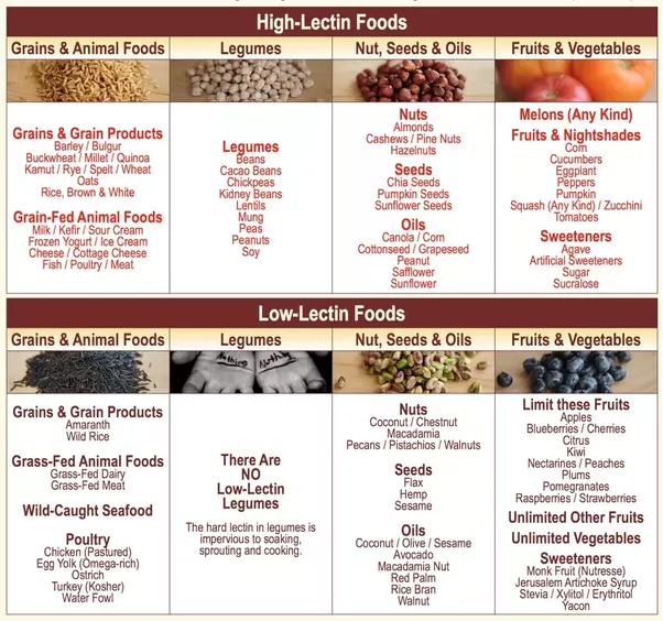 Foods That Contain High Levels Of Lectin