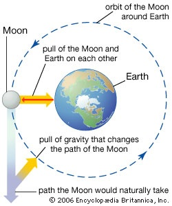 Image result for centripetal force earth image