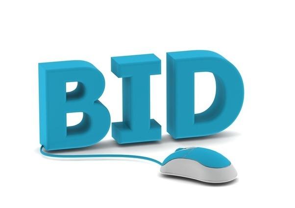 Online dating bidding