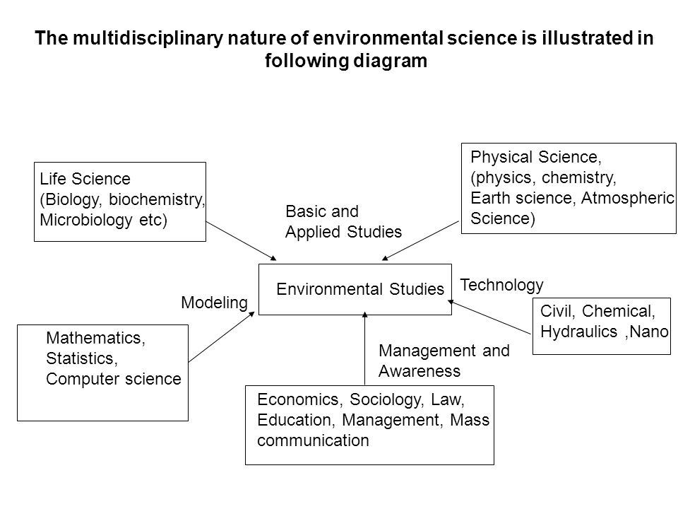 What is meant by 'the multidisciplinary nature of environmental