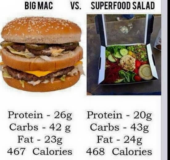 We Have Found Out Earlier That Can Eat Wver Want A Still Lose Weight As Long Are In Caloric Deficit The Same Goes For Macronutrients