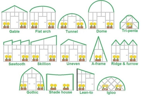 Why Do Greenhouse Builds Have An Arch Curvy Top Instead Of