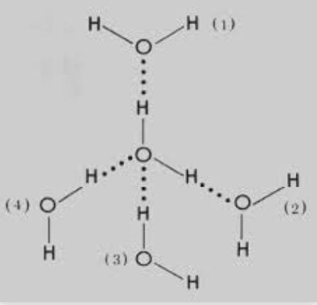 Five Positive End Water Molecule Diagram Wiring Diagram Services