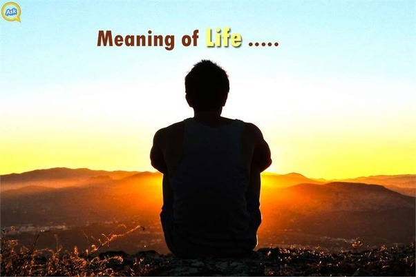 From The Bible To Various Schools Of Life All Focus On Comprehending Meaning And Creation Humanity