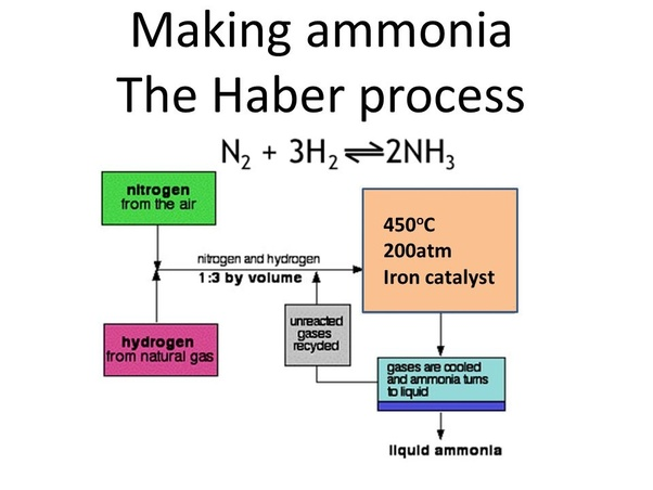 What type of reaction takes place in the haber process exothermic flow scheme is as follows ccuart