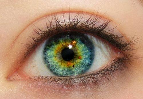 Are bluish green eyes considered hazel? - Quora