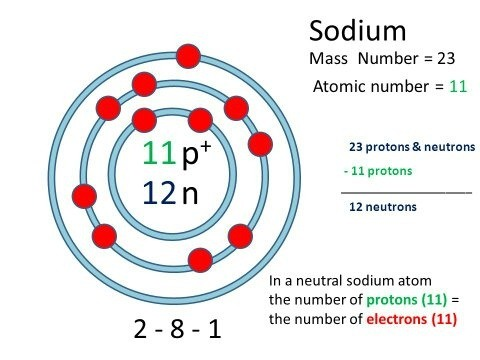 What is the atomic number of sodium quora there are 12 neutrons11 protones and 11 electrons in sodiumna atomomic mass a of na is 23 urtaz Image collections