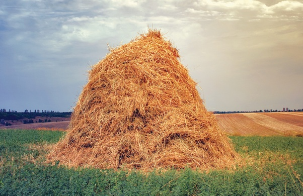 What Is The Meaning Of Finding A Needle In A Haystack