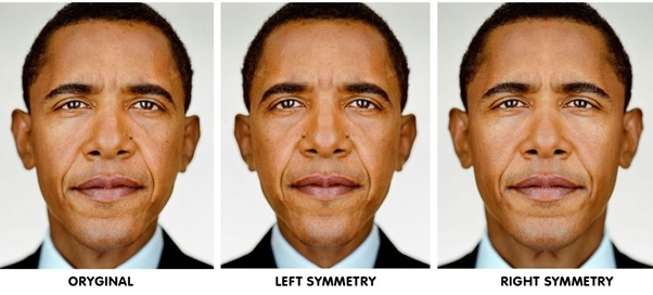 why are human faces not symmetrical quora