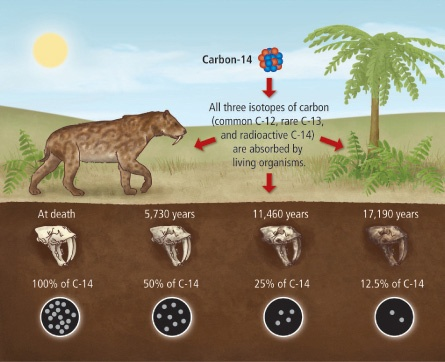 How Accurate is Carbon Dating