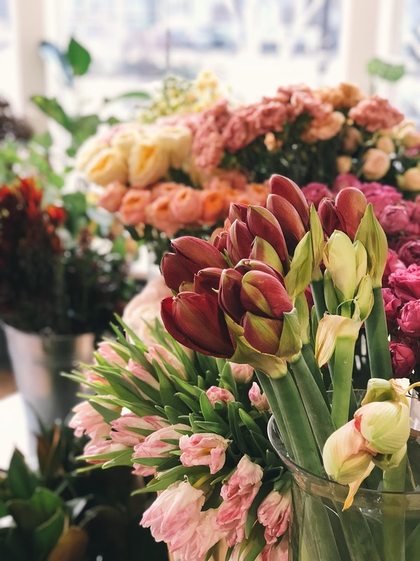 Which Is The Best Flower Delivery Service In Florist