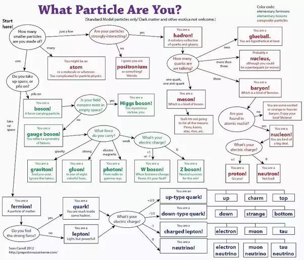 Science Physics Difference: What Are Quarks, Fermions, Baryons, Leptons, Bosons