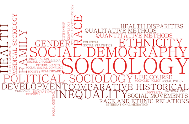 what are the scope of sociology