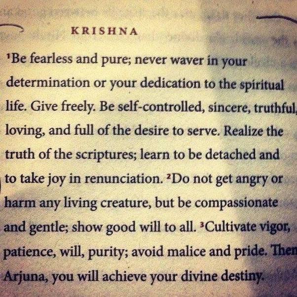 arjun and krishna relationship advice