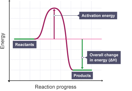 Does The Difference Between Activation Energies For Both Forward And