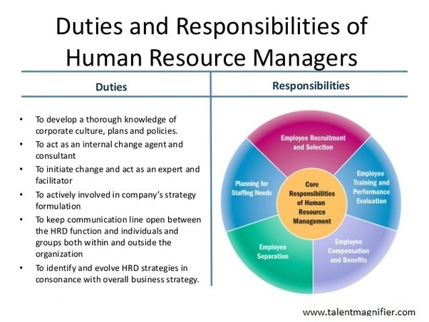 Dissertation on the role of it in human resource development