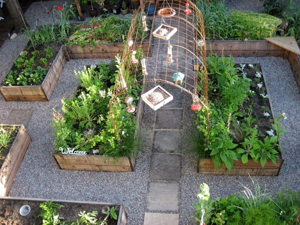 What is the importance of kitchen garden? - Quora