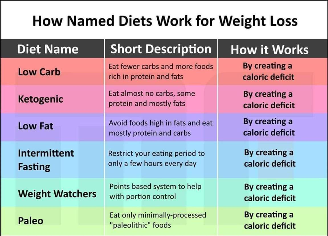 why fasting diet works