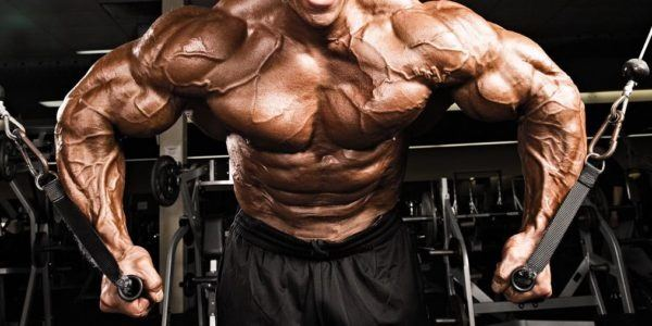 Heres A GREAT Chest Workout For Gladiator Looking Pecs