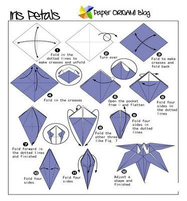 How to make paper flowers quora there are so many different flower origami models but what i find really beautiful and is not too complex is the iris flower mightylinksfo