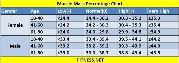 Muscle growth rate calculator