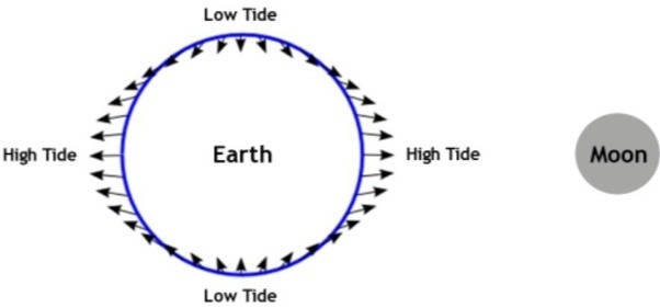explanation of the tides essay Get an explanation of the tides and the moon with help from an associate professor of geology at suffolk county community college in this free video clip to understand tides you need to understand a little bi about gravity now, gravity is an attractive force that is caused by mass.