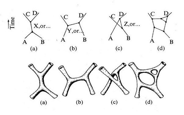 what are the main differences between string theory and