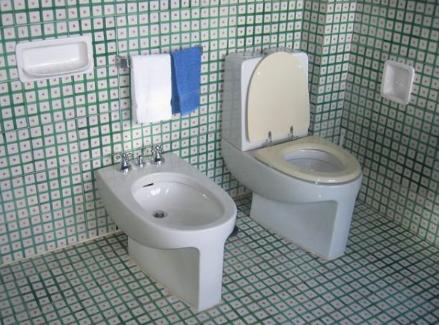 Brazilian Toilet Slave