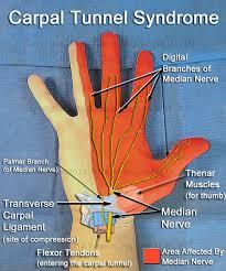 When I do push-ups, my fingers hurt. Why? - Quora