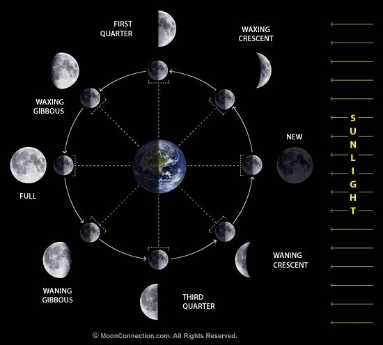 How do the phases of the moon occur quora sciox Image collections