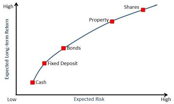 What are high risk investment options
