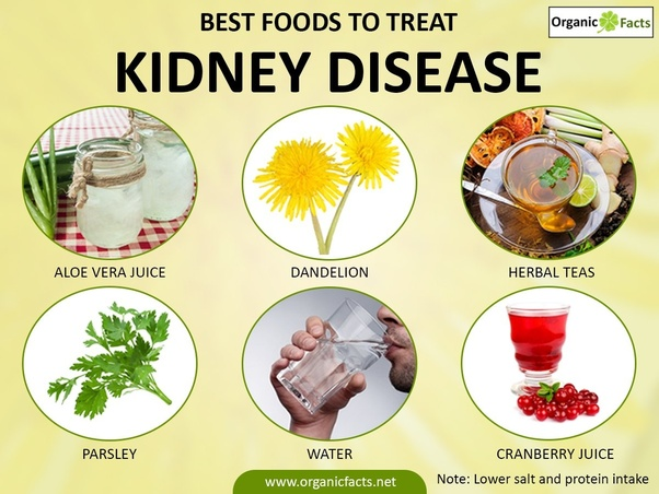 What Are The Basic Symptoms And Treatments For Kidney Failure Quora