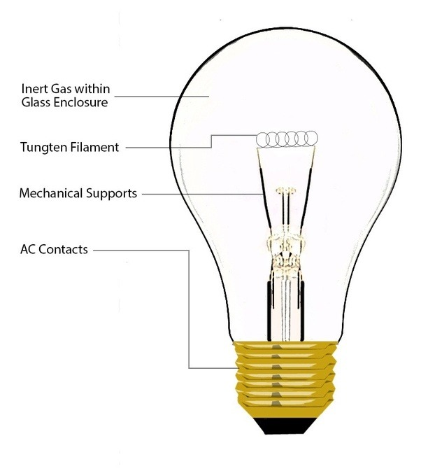 If i have ac circuit of lamp which the neutral wire is disconnected an incandescent bulb doesnt care which way you connect the neutral live wire to it it works regardless of how you plugged the lamps plug into the greentooth