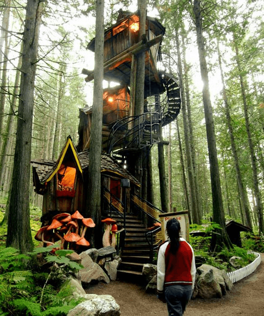 tree house decorating ideas.  Ideas I Donu0027t Know If You Already Have It Made Yet But We A Blog Of Some  Pretty Fantastic Looking Tree House Exteriors So Had To Share On Tree House Decorating Ideas T