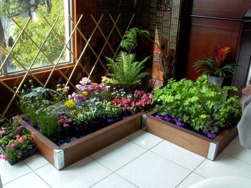 D Indoor Gardening Is The Best Idea For Everyone To Add A Great Value  Properties This Type Of Gardening Requires Less Effort But Creative Mind