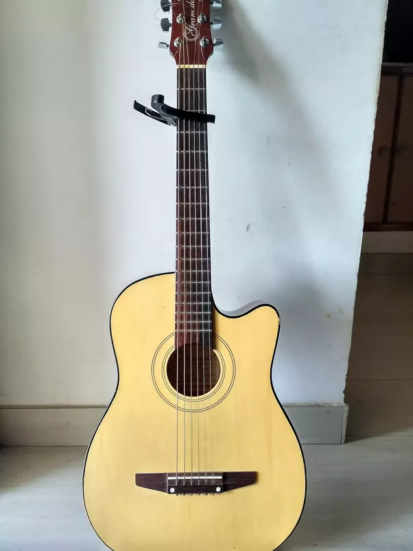 Tag Best Acoustic Guitar To Buy For Beginners Waldon Protese De