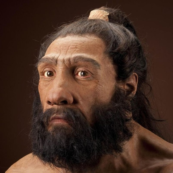 Early humans neanderthals-nude pics