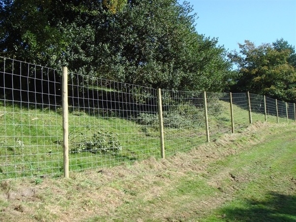 What Are The Different Types Of Fencing Quora