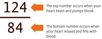the bottom number blood pressure