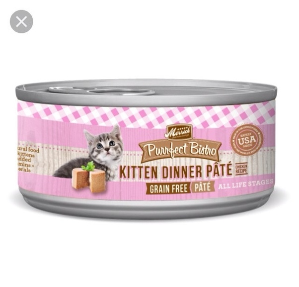 At What Age Can A Kitten Eat Cat Food Quora