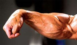 Is it true that girls find visible veins on arms ...