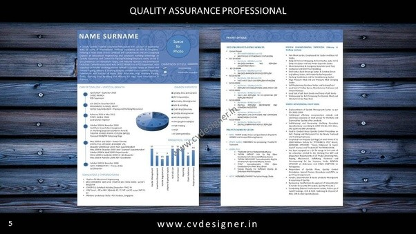 What Is The Best Executive Resume Writing Service In India