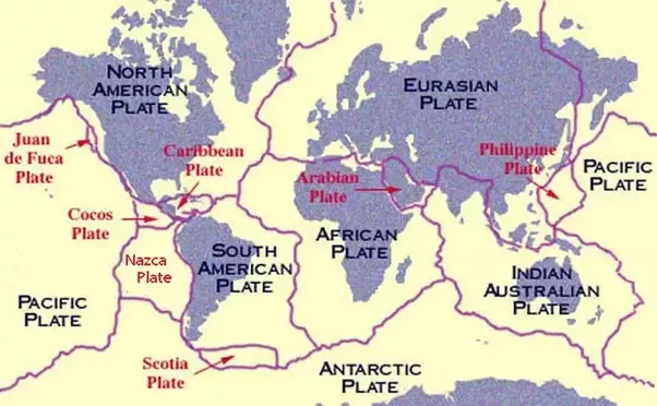 What are the seven major tectonic plates and which one displays the the largest platesmajor tectonic plates are the gumiabroncs Choice Image