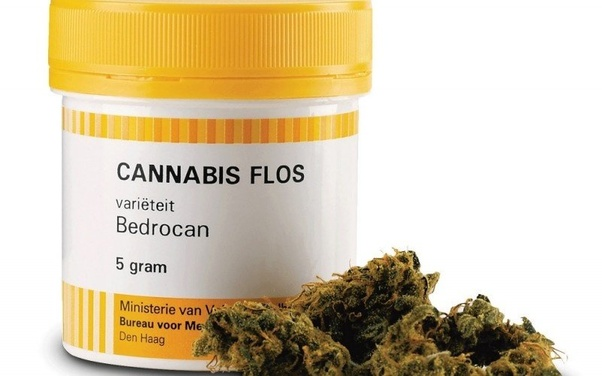 Can I bring back some weed from Amsterdam to UK? - Quora