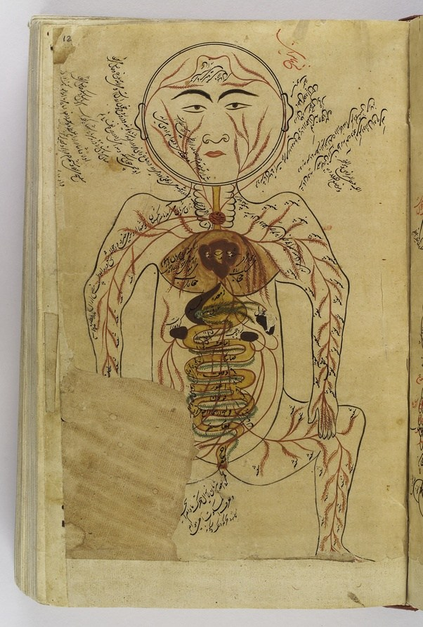 How medically accurate is Avicenna\'s \'Canon of Medicine\' by today\'s ...
