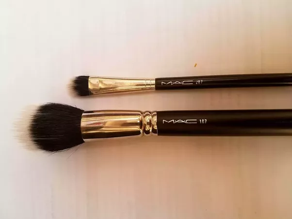 Dual Fiber Brushes There Isnt Much Contrast Between The White Background And Tips But Are Synthetic Fibers Extending Beyond Black