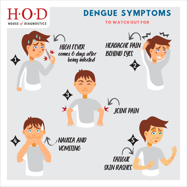 Can dengue fever occur to same person twice? - Quora